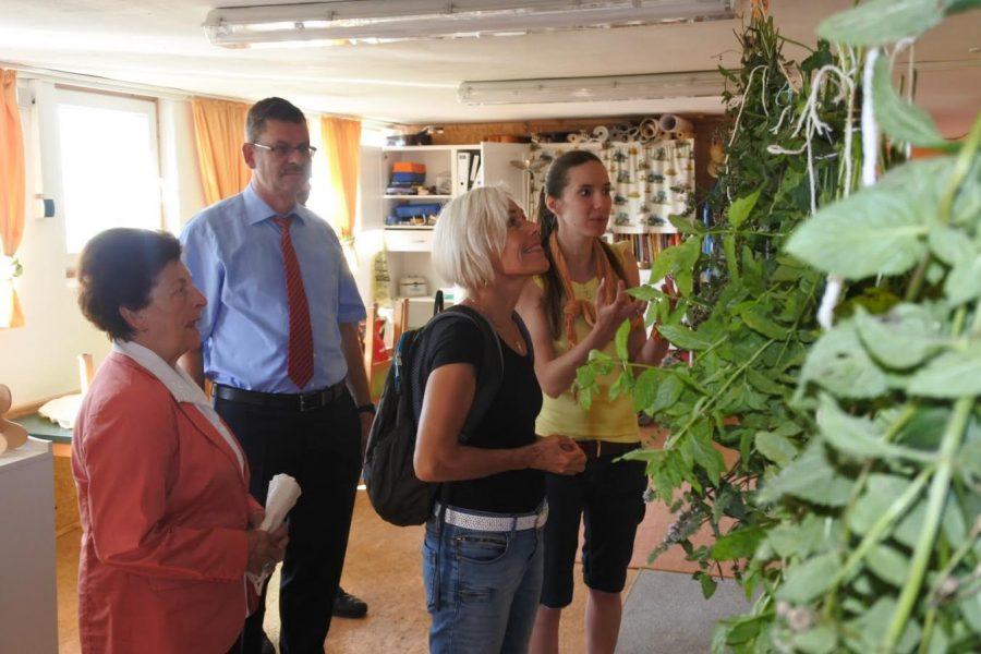 Bettina Müller zu Besuch im Naturkinderland Erlenhof, v.l.: Irmgard Reichert (SPD-Glauburg), Bürgermeister Carsten Krätschmer, Bettina Müller und Isabella Drung (Einrichtungsleiterin).